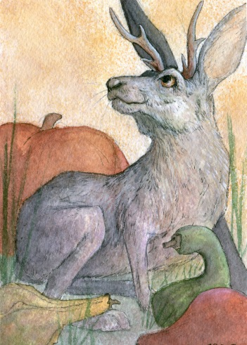 Harvest_Hare