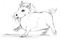 Pudgy Baby Unicorn